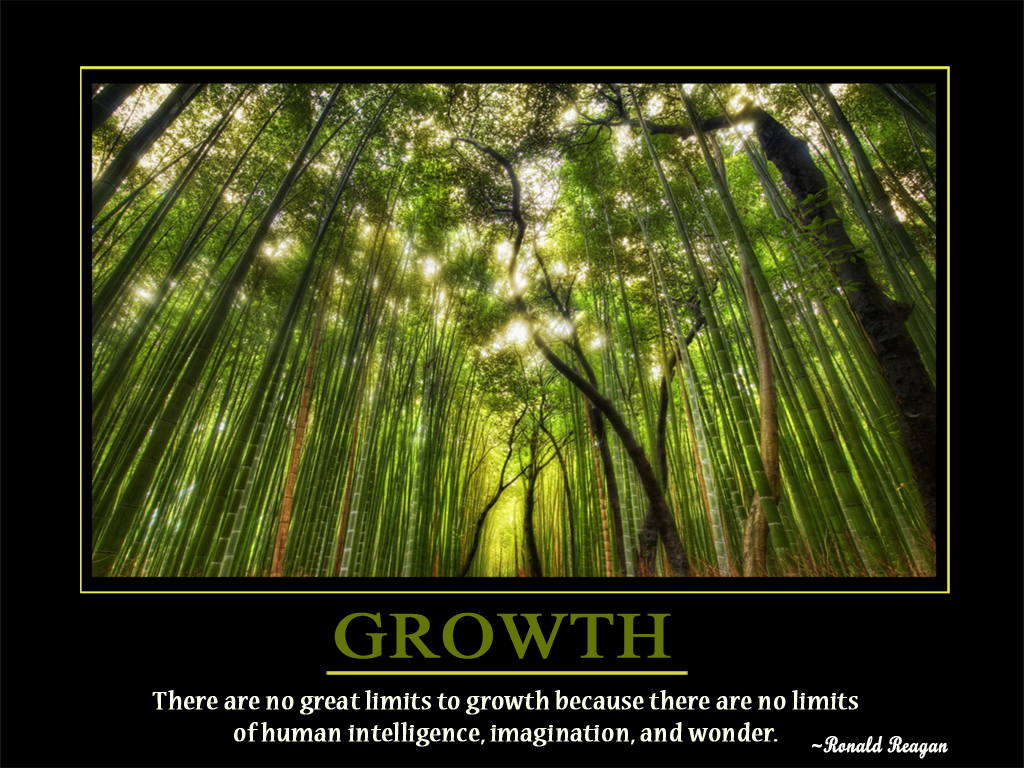 61 Beautiful Growth Quotes And Sayings