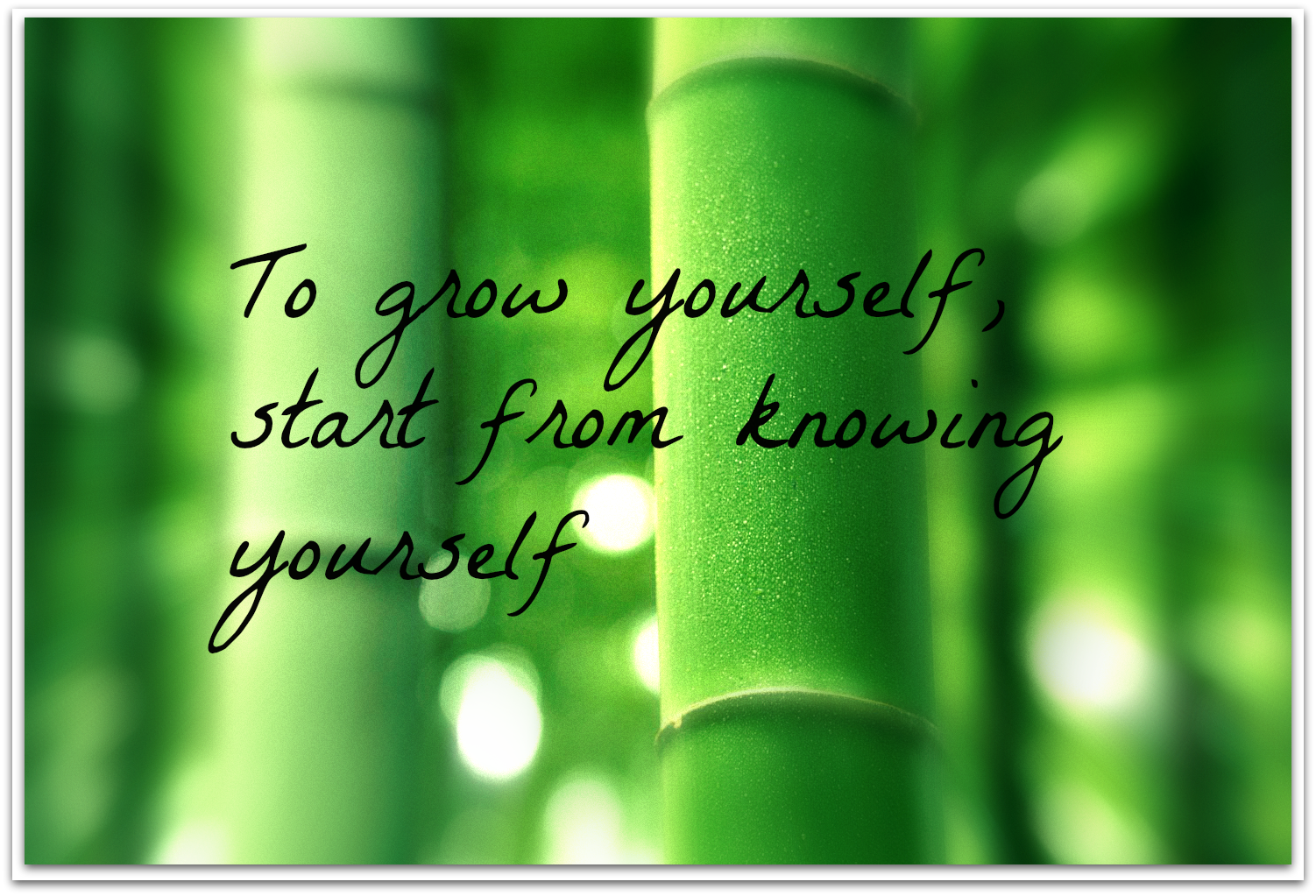 Personal Development Quotes 61 Beautiful Growth Quotes And Sayings