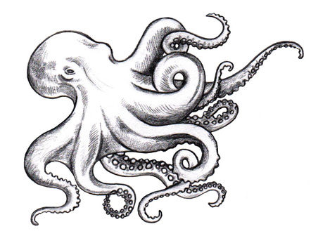 37+ Black And White Octopus Tattoos