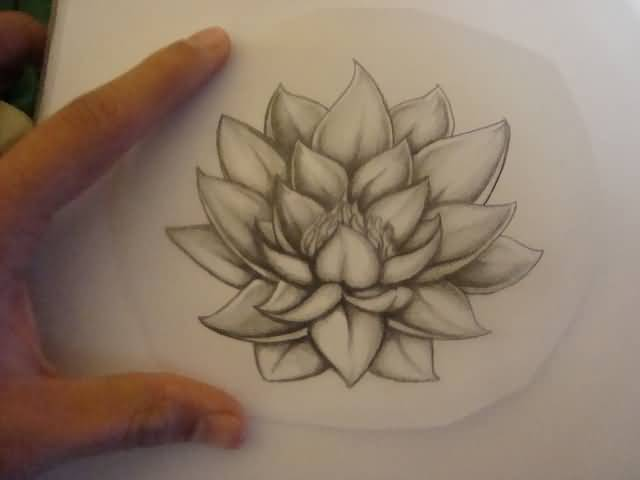 18+ Latest Lotus Tattoos Designs