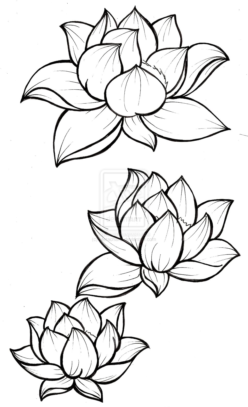 18 latest lotus tattoos designs. Black Bedroom Furniture Sets. Home Design Ideas