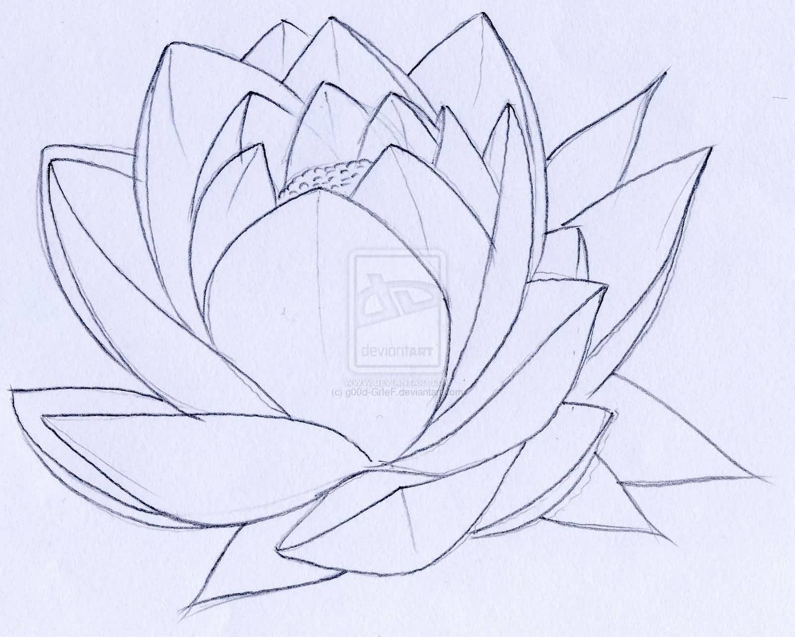 18 Latest Lotus Tattoos Designs