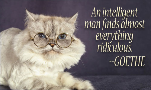 An Intelligent Man Finds Almost Everything Ridiculous. Goethe