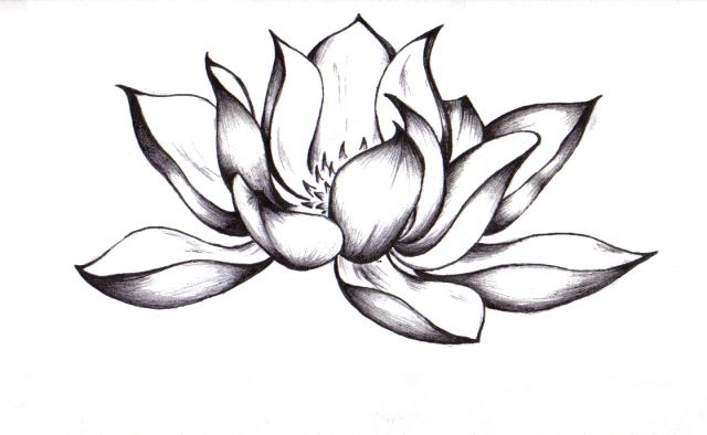 Awesome black ink lotus flower tattoo design by chelsea mightylinksfo