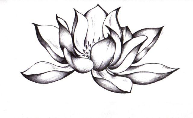 Awesome black ink lotus flower tattoo design mightylinksfo