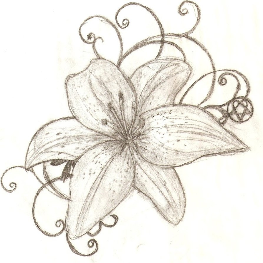 64 stargazer lily tattoos ideas awesome stargazer lily tattoo design dhlflorist Image collections