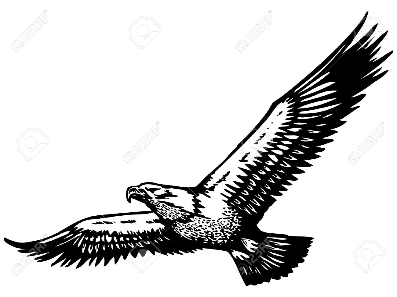 Black Ink Flying Eagle Tattoo Stencil