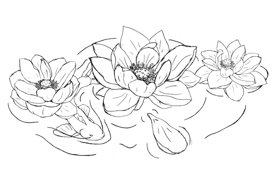 Black outline lotus flowers tattoo design mightylinksfo