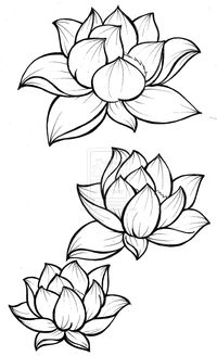 Black Outline Three Lotus Flowers Tattoo Design