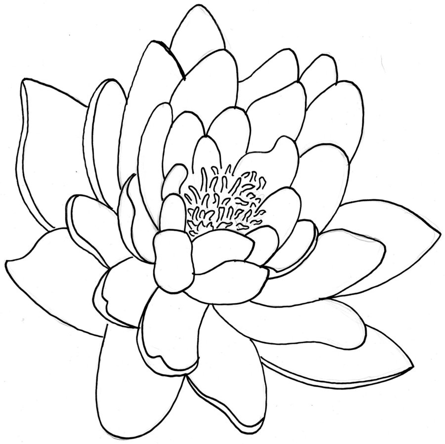 Line Art Design : Lotus tattoo stencils designs