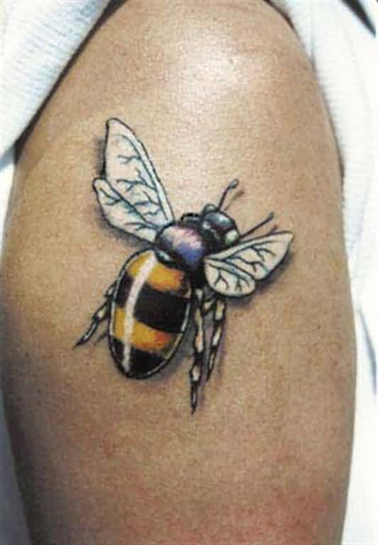cool bumblebee tattoo design for half sleeve. Black Bedroom Furniture Sets. Home Design Ideas