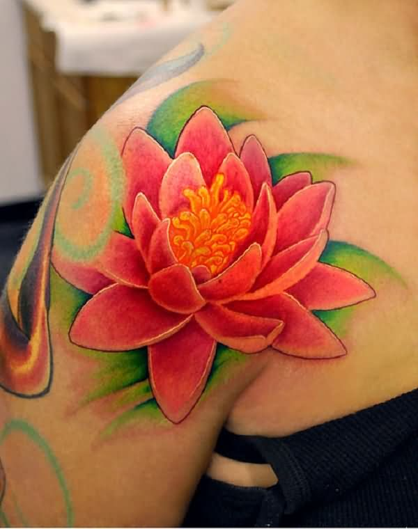 Pink lotus flowers pictures to pin on pinterest tattooskid for Lotus flower bomb tattoo