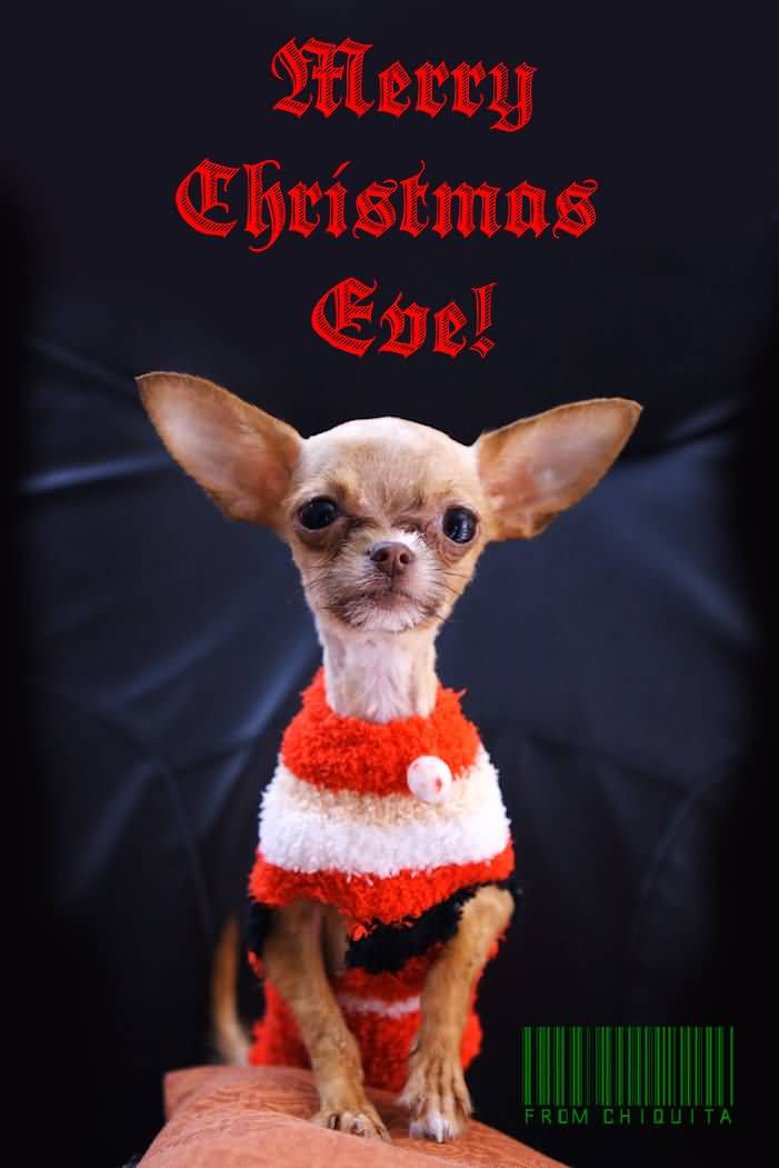Merry Christmas Eve Images.36 Adorable Christmas Eve Greeting Pictures And Photos