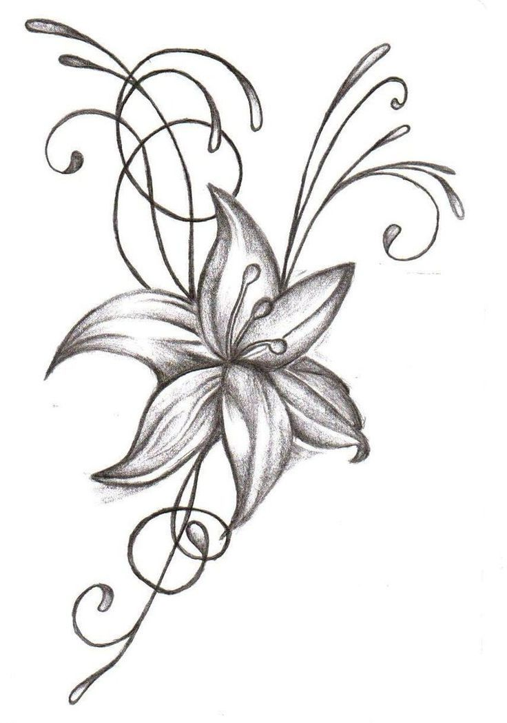 be8a0c049 59+ Beautiful Tiger Lily Tattoos Ideas
