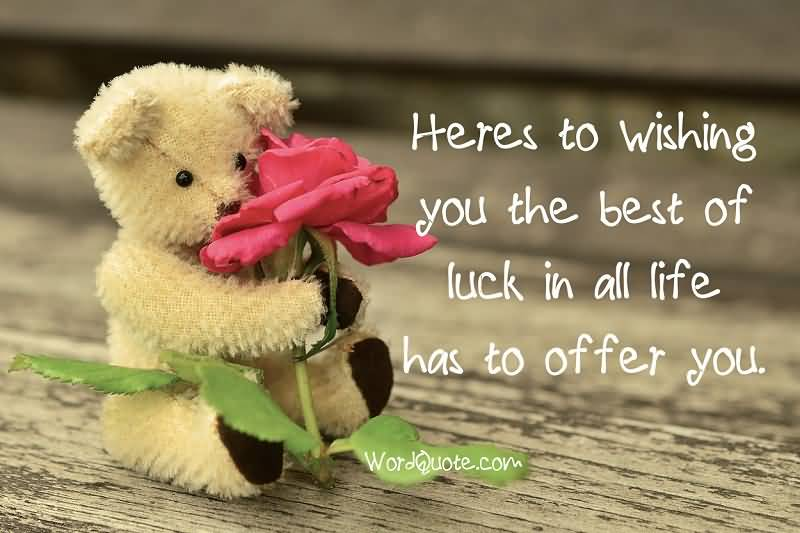 heres to wishing you the best of luck in all life has to offer you