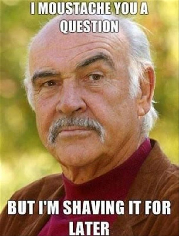 I Moustache You A Question But Im Shaving It For Later Funny Meme 55 most funny memes on the internet,Funny November Meme