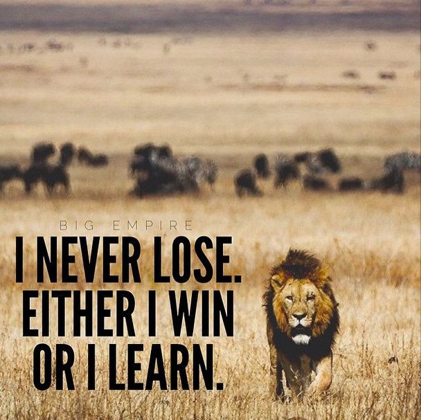 Quotes About Winning And Losing Fascinating 48 Best Losing Quotes And Sayings