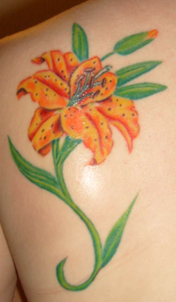 59 beautiful tiger lily tattoos ideas left back shoulder tiger lily tattoo prinsesfo Image collections