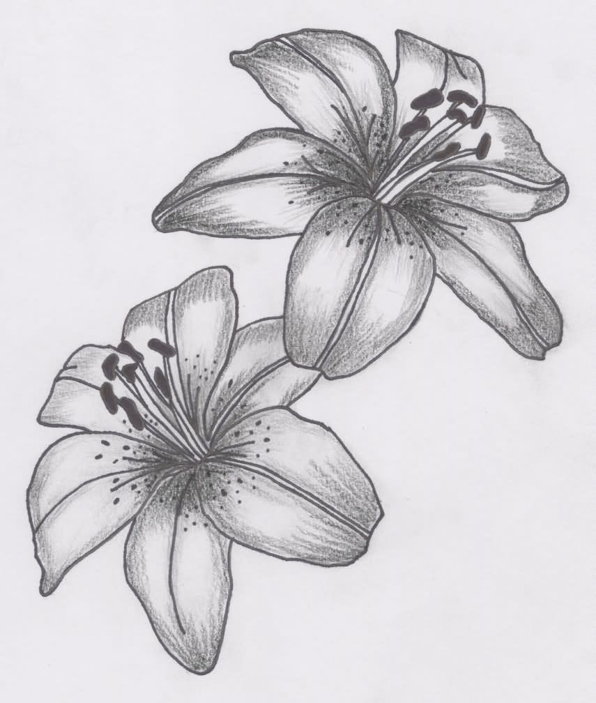 61 lily flowers tattoos collection lily flowers tattoos designs izmirmasajfo Choice Image