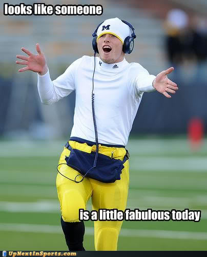 Looks Like Someone Is A Little Fabulous Today Funny Sports Picture