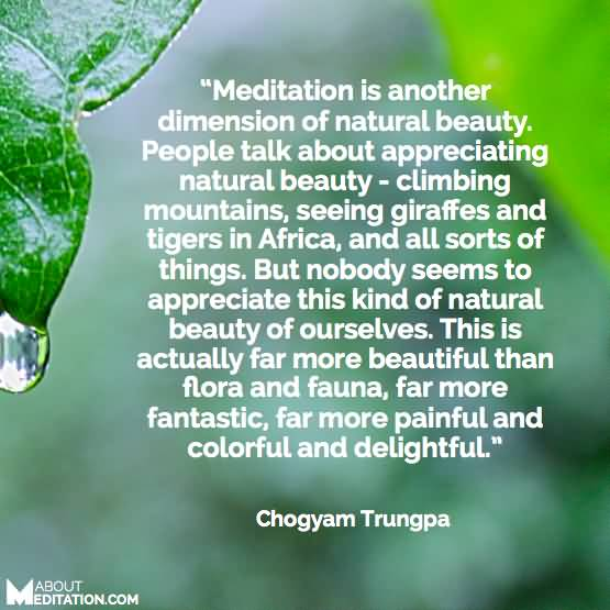 Meditation Is Another Dimension Of Natural Beauty People Talk About Appreciating Natural Beauty Climbing Mountains Seeing