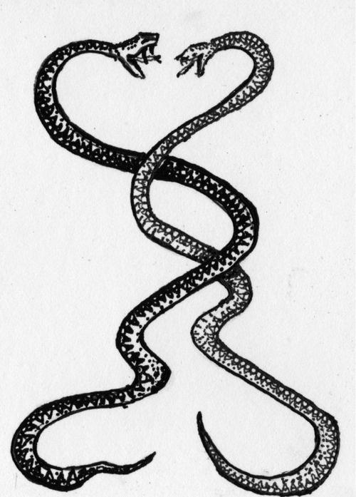 54 latest snake tattoo designs. Black Bedroom Furniture Sets. Home Design Ideas
