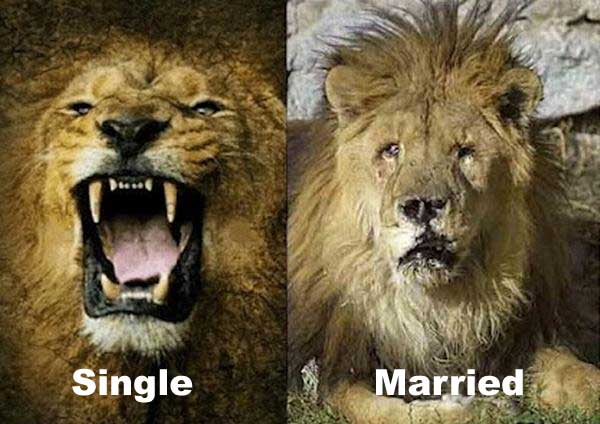single people vs married