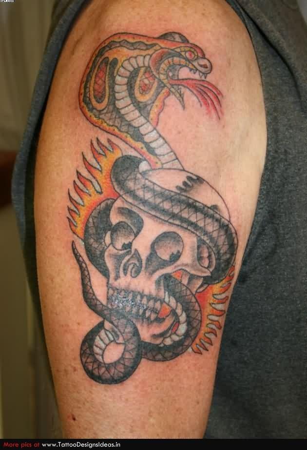 Snake Skull Tattoo: 46+ Cobra Snake Tattoos Collection