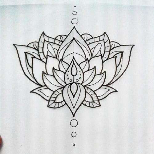 Wonderful black outline lotus flower tattoo design mightylinksfo Gallery