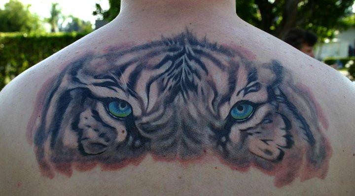 Beautiful Blue Tiger Eyes Tattoo On Upper Back