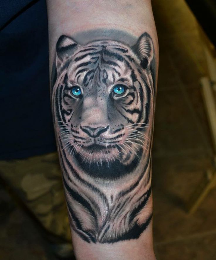 Black And Grey Tiger With Blue Eyes Tattoo On Left Arm
