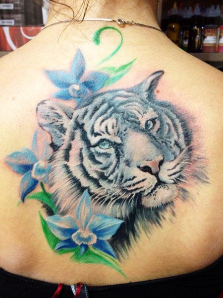 fdace31d3 Blue Flowers And White Tiger Head Tattoo On Upper Back