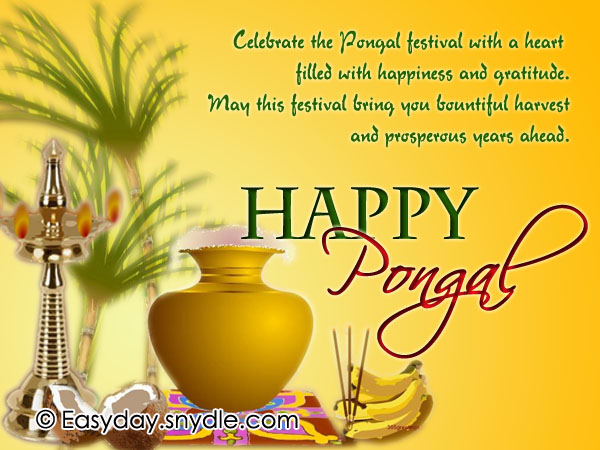 45 best pongal 2018 greeting pictures and images celebrate the pongal festival with a heart filled with happiness and gratitude happy pongal m4hsunfo