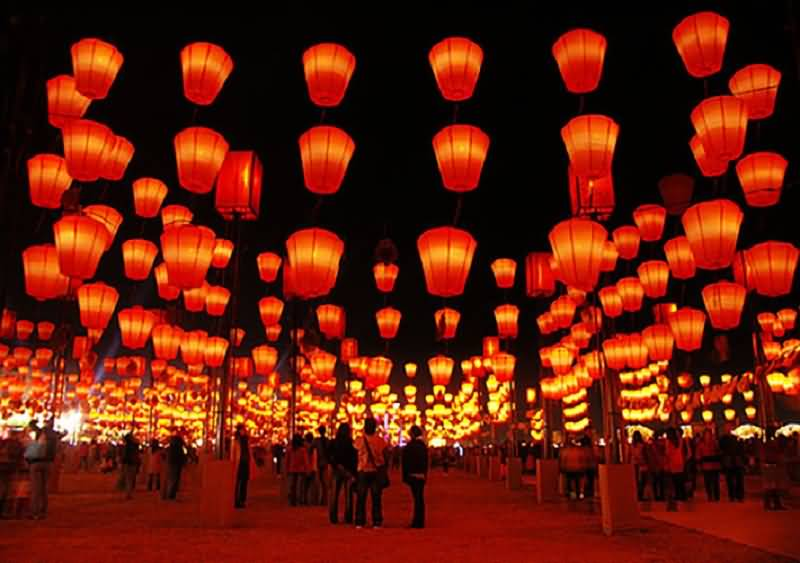 chinese new year celebration in taiwan hanging lanterns - Chinese New Year Lanterns