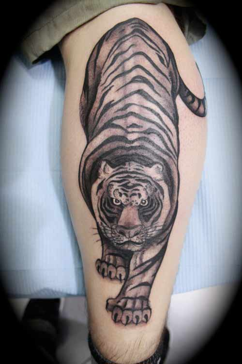 62 chinese tiger tattoos with meanings for Tiger thigh tattoos