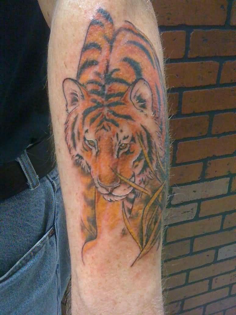 62 best tiger tattoos on forearm. Black Bedroom Furniture Sets. Home Design Ideas