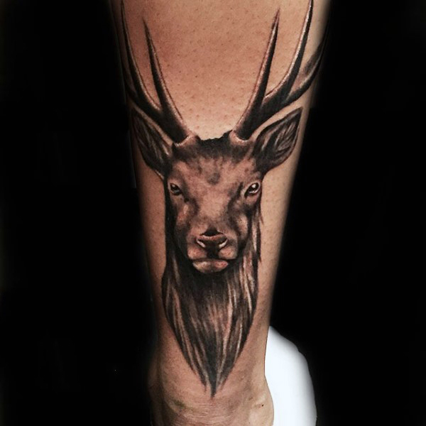 Deer Head Tattoo For Women Antlers