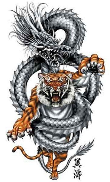 Dragon and tiger tattoo design