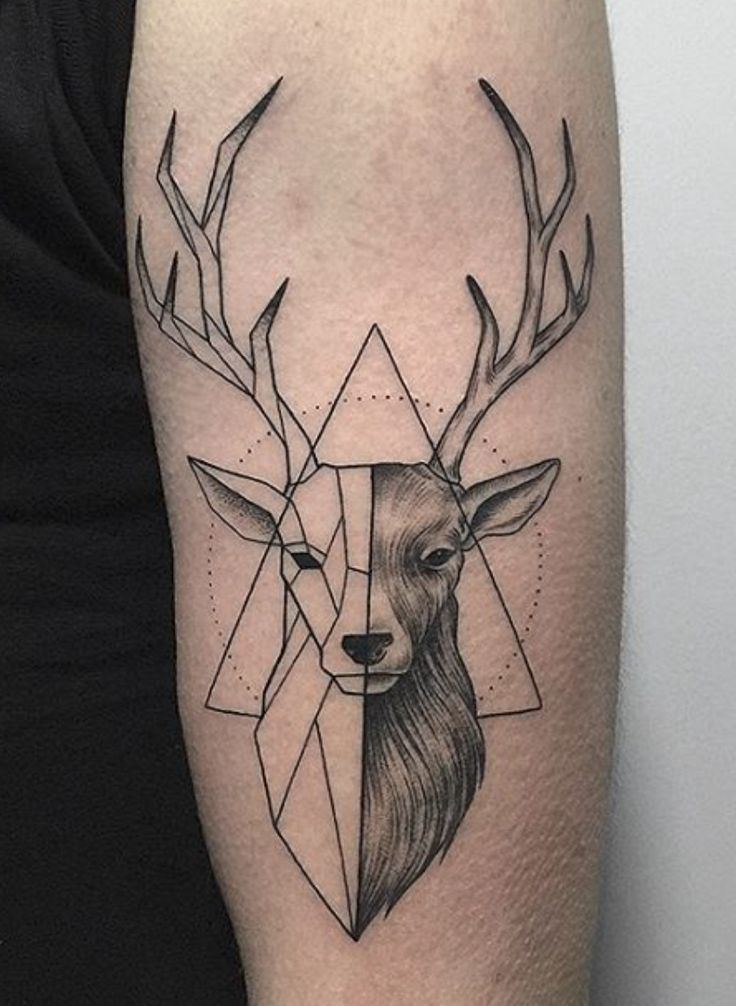 59 best geometric deer tattoos. Black Bedroom Furniture Sets. Home Design Ideas