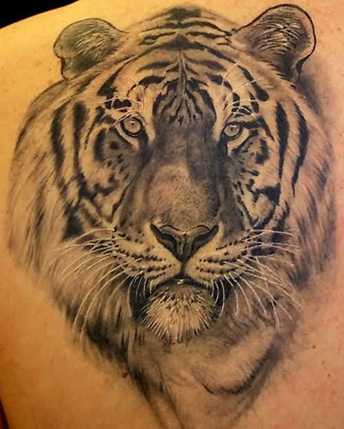 59 tiger face tattoos designs ideas. Black Bedroom Furniture Sets. Home Design Ideas
