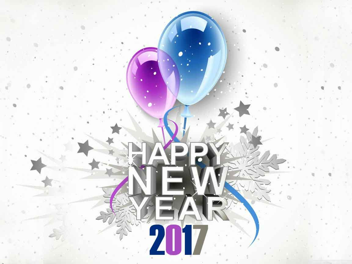 Pictures about the New Year 2017 7