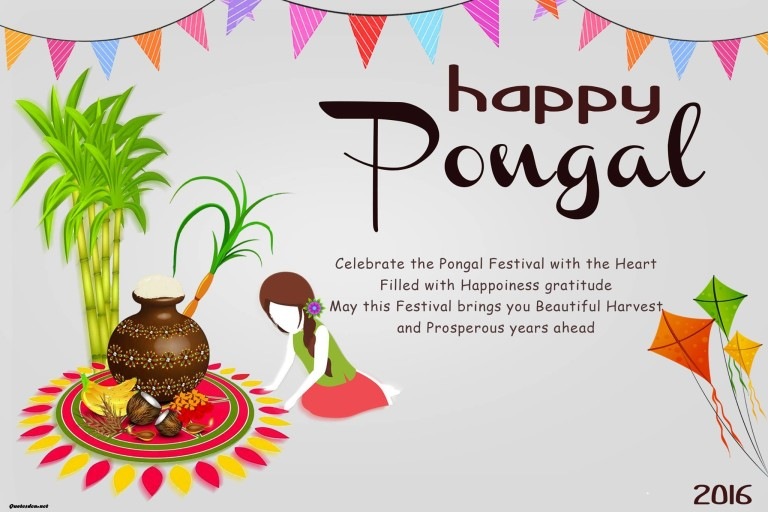 35 adorable pongal 2017 wish pictures and images happy pongal celebrate the pongal festival with the heart filled with happiness gratitude m4hsunfo