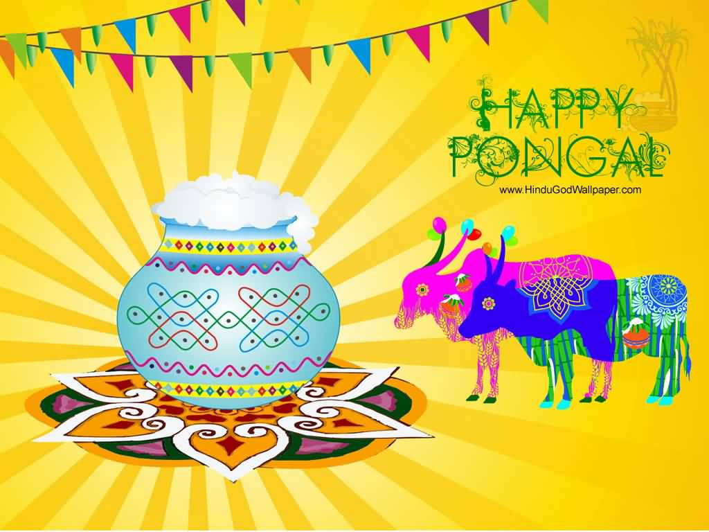35 adorable pongal 2017 wish pictures and images happy pongal greetings picture m4hsunfo Gallery