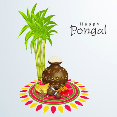 Happy Pongal Sugarcane And Pot Picture