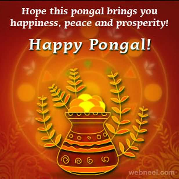 Hope this pongal brings you happiness peace and prosperity happy hope this pongal brings you happiness peace and prosperity happy pongal greeting card m4hsunfo