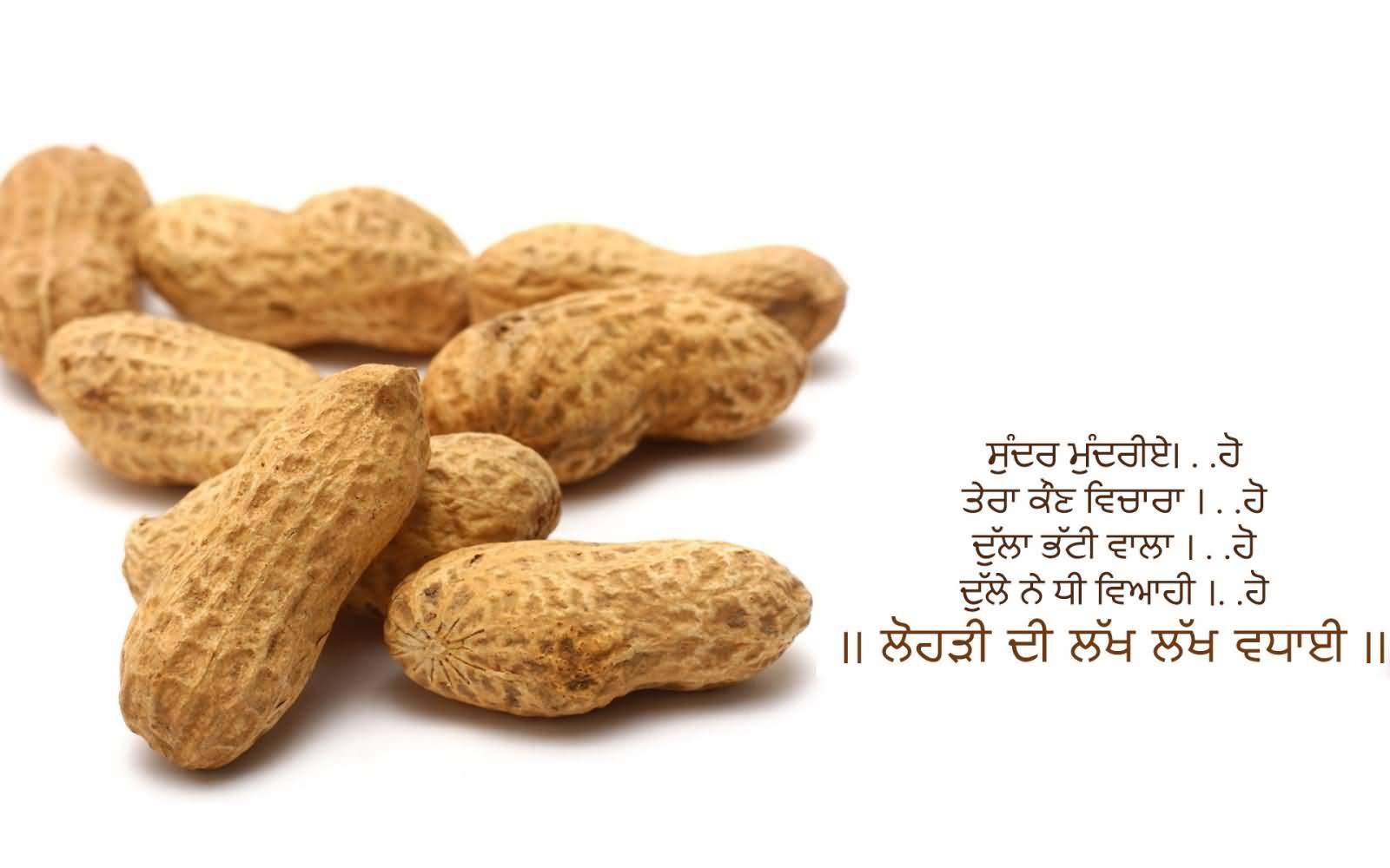Lohri Wishes In Punjabi