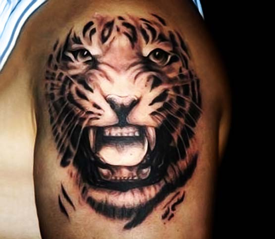Tattoo Designs Tiger: 65+ Tiger Tattoos, Designs & Ideas