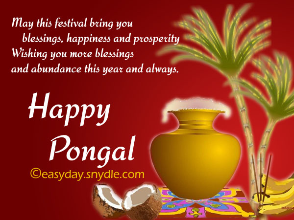May This Festival Bring You Blessings, Happiness And Prosperity Wishing You More Blessings And Abundance This Year And Always Happy Pongal