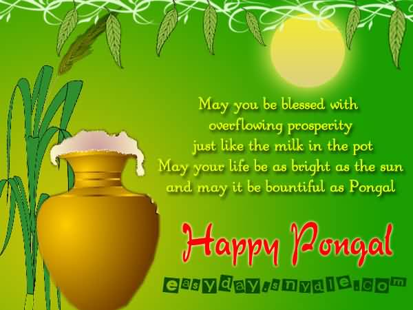 May You Be Blessed With Overflowing Prosperity Just Like The Milk In The Pot May Your Life Be As Bright As The Sun And May It Be Bountiful As Pongal Happy Pongal