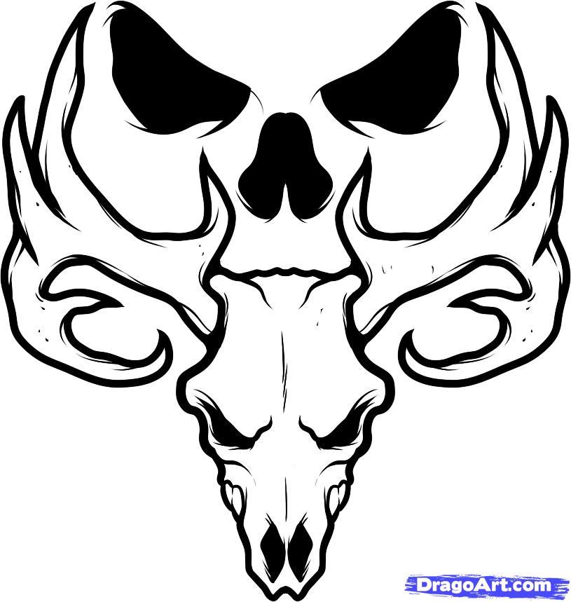 27 Deer Skull Tattoo Designs Ideas